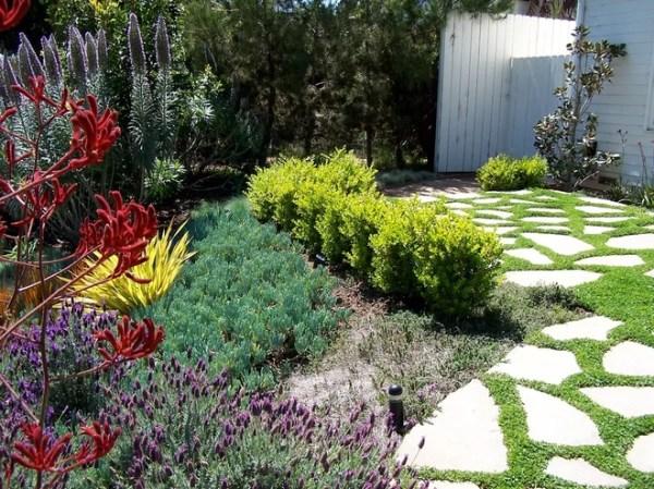 water-saving landscaping ideas