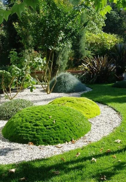 moss nature's carpet garden