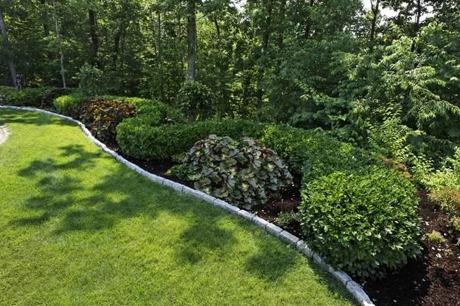 Landscape Design Wooded Backyard – Thorplc Com
