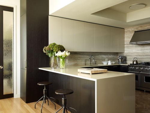 Riverhouse contemporary kitchen