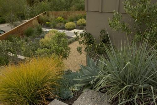 Bonifield Residence contemporary landscape