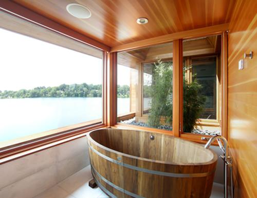 Master Bathing Suite contemporary bathroom