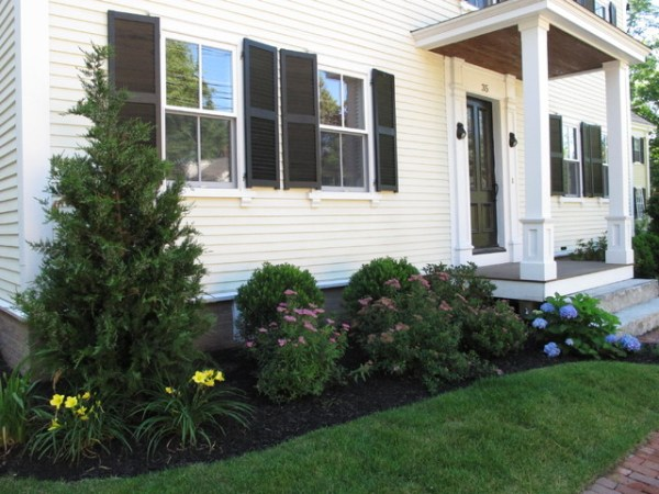 front foundation planting - traditional
