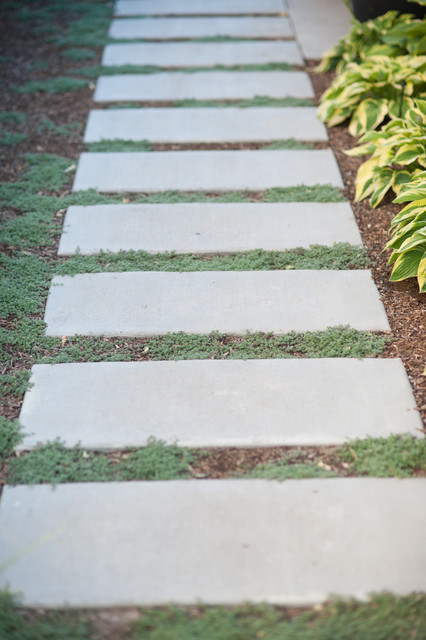 concrete walkway and landscaping