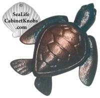Coastal Cabinet Knobs - Beach Style - orlando - by Sea ...