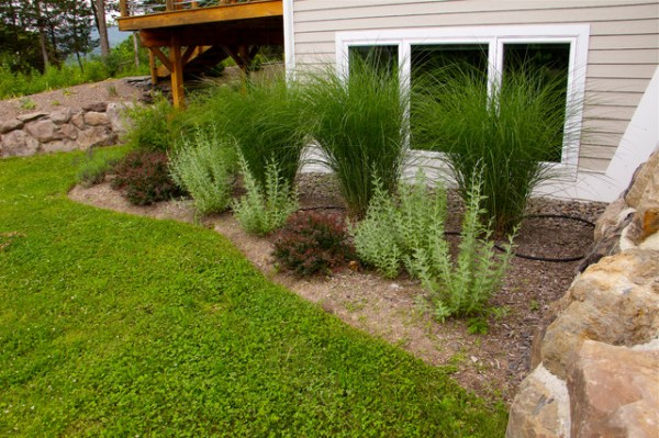 deer resistant gardens - traditional
