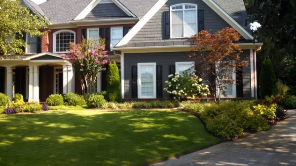 residential landscape renovation
