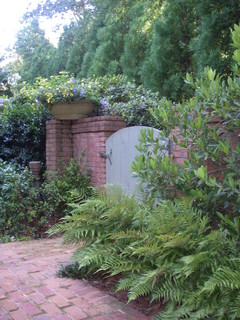 side yard alley - traditional