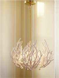 Coral Chandelier - Eclectic - Chandeliers - by Moth Design