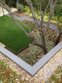 Modern Garden/ Green Roof
