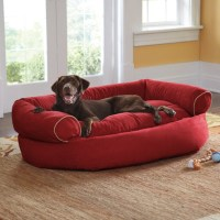 Sofa Dog Bed - Grandin Road - Contemporary - Beds - by ...