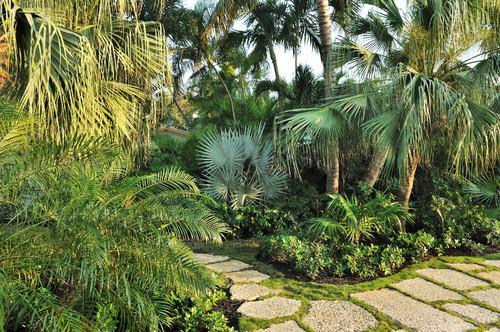 garden styles impatient