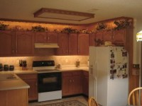 Accent Lighting - Traditional - Undercabinet Lighting ...