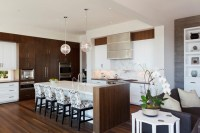 Northwest Contemporary Home - Contemporary - Kitchen ...