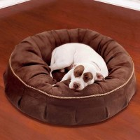 Animals Matter Royal Pet Bed Dog Bed - Traditional - Dog Beds