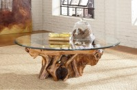 Tree Root Glass Top Coffee Table - Hidden Treasures by ...
