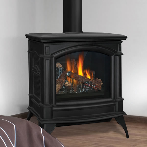GDS60IN Napoleon Direct Vent CastIron Gas Stove  Modern  Fireplace Accessories  by