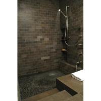 Roman tub/shower - Modern - Bathroom - other metro - by ...