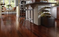 Wenge - Modern - Hardwood Flooring - other metro - by ...