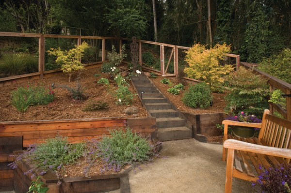 award winning terraced garden