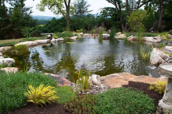 berks county pa pond & waterfalls
