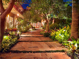 entry courtyard - tropical landscape