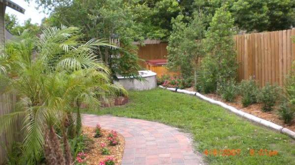 drought resistant garden - tropical