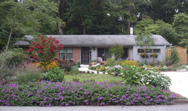 whinter landscaping