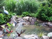 KOI Pond, Backyard Pond & Small Pond Ideas for your ...