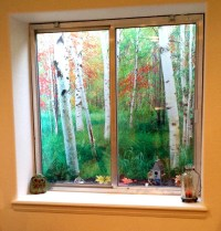 Decorating basement window wells