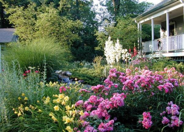 informal and naturalistic garden