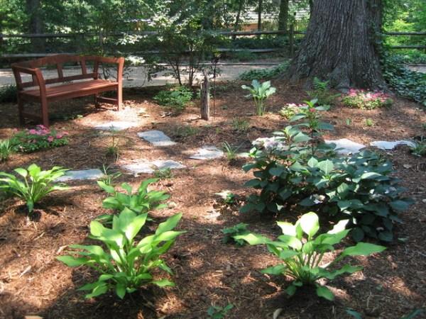 garden bench in shady spot