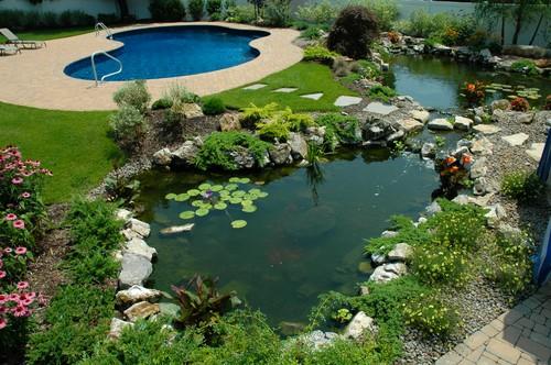 aquascape landscape beautiful