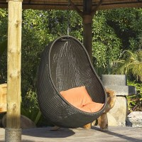Hanging Basket Chair - Contemporary - Outdoor Lounge ...