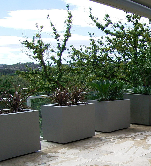 planter boxes contemporary-outdoor-pots-and-planters