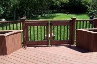 One Level Trex Accents Saddle Wood Deck with Lighting and