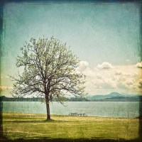 Landscape Photography/Wall Art - Traditional - Artwork ...