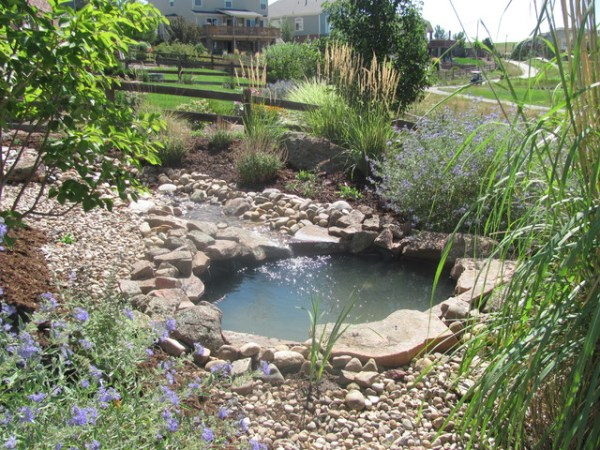 yard natural stream and pond