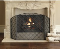 Darboux Fireplace Screen - Traditional - Fireplace Screens ...