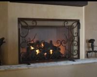 Fireplace Screen - Traditional - Living Room - phoenix ...