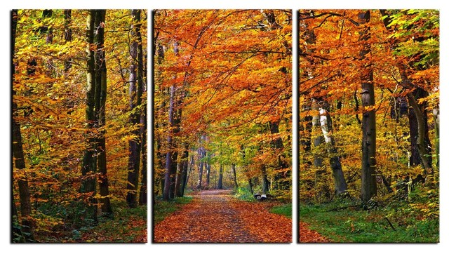 Canvas Art Prints, Framed 3 Panel Forest Pathway Tree