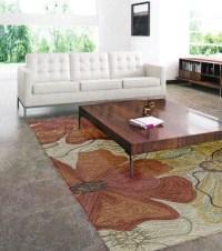 Floral Area Rug - Transitional - Living Room - orange ...