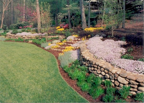 beautiful backyard landscaping