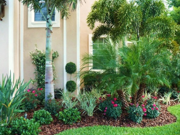 front yard landscaping tropical
