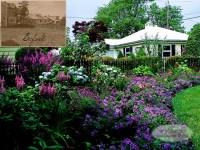 Front Yard Cottage Garden - Traditional - Landscape ...