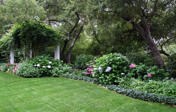 yard shade garden - traditional