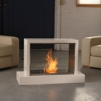 Real Flame Insight Ventless Gel Fuel Fireplace - Modern ...
