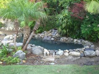Koi Ponds  Tropical  Landscape  los angeles  by Castleconcrete