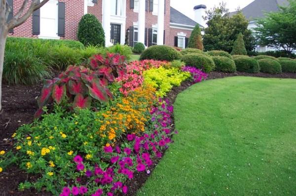 flower gardens in south - landscape