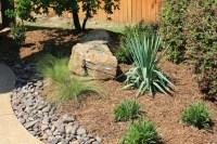 Pool Landscaping Ideas North Texas PDF